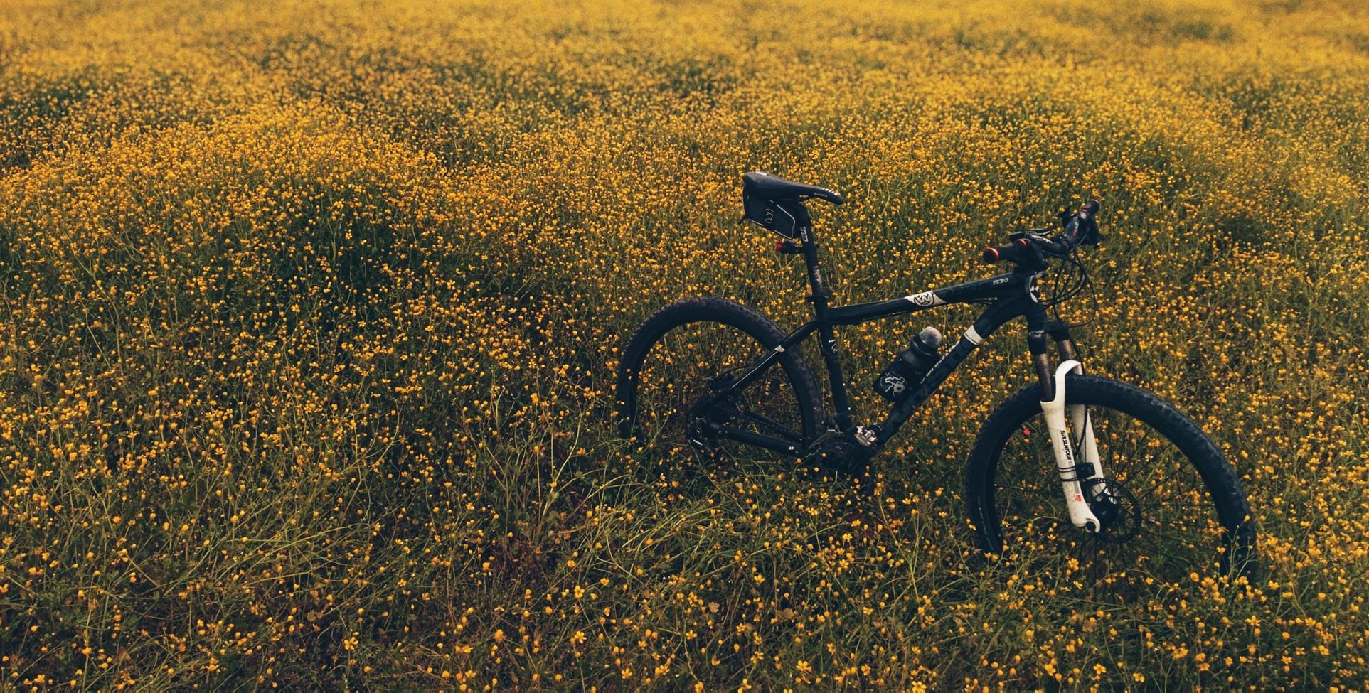 Un VTT bien équipé en sortie dans les champs. Un vélo, un smartphone sur son support et on estéquipé pour unesortie dans les champs en toute sécurité.