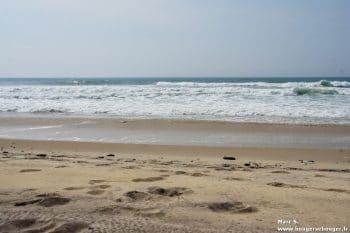 Lors d'une rando vélo entre Charentes, Saintonge et Médoc, vue de la plage du Crohot des Cavales, à proximité du domaine départemental de sports et de loisirs de Bombannes.